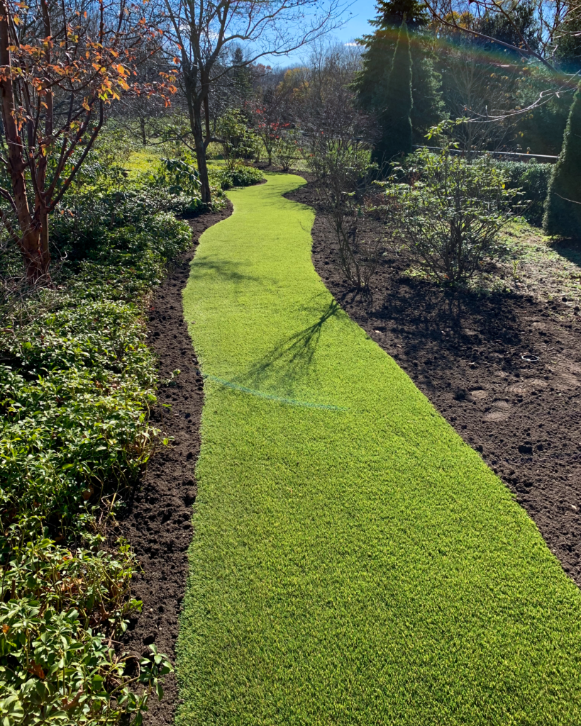 Synthetic Grass pathway
